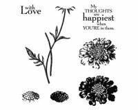 Field Flowers-001