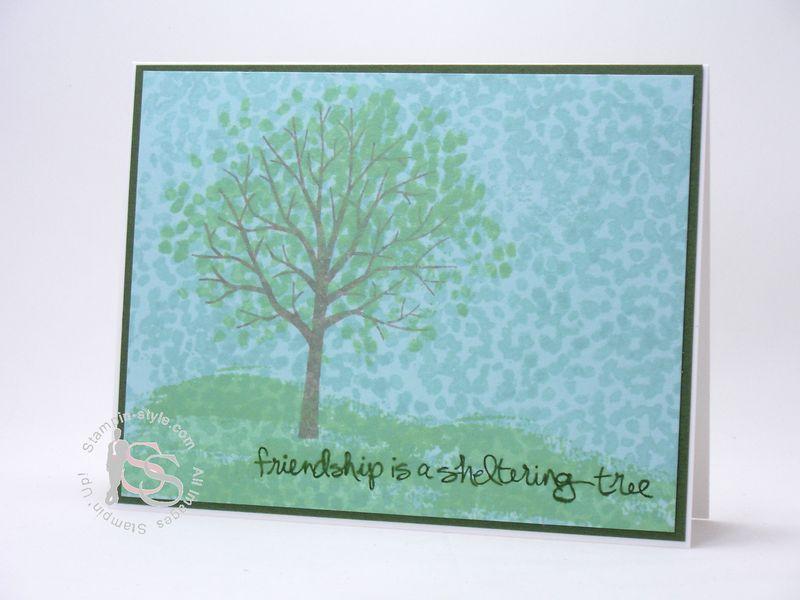 SRC-Sheltering Tree